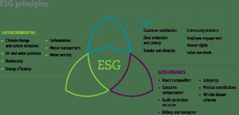 Принципы ESG инвестирования